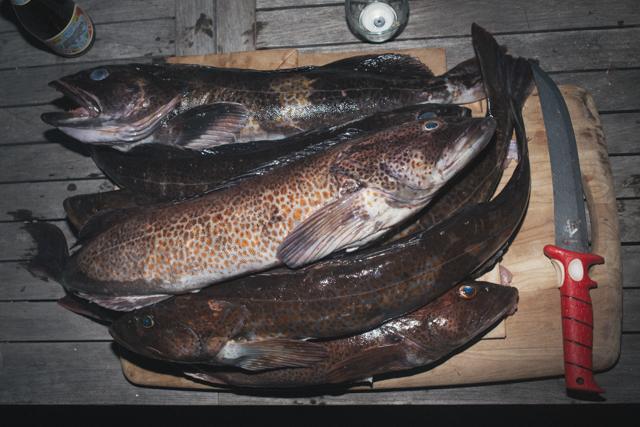 fishin-12